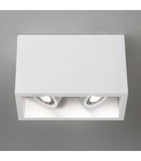 LED 2 Light Twin Adjustable Surface Mounted Downlight Plaster, GU10