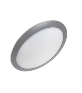 1 Light Outdoor Surface Mounted Lighting Grey IP65