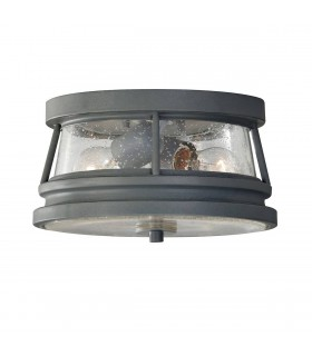 2 Light Outdoor Flush Ceiling Light Storm Cloud IP44, E27