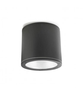 2 Light Outdoor Surface Mounted Ceiling Light Urban Grey IP65