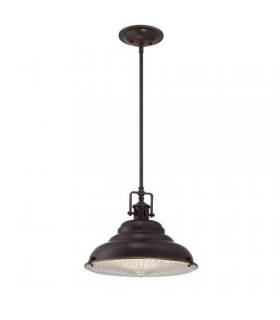 1 Light Large Dome Ceiling Pendant Palladian Bronze